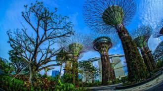 Việt Nam nằm trong top 10 thị trường du lịch của Singapore