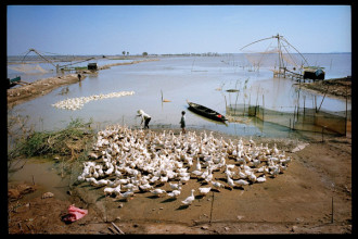 Cuộc sống bên dòng sông MeKong huyền bí qua những bức ảnh