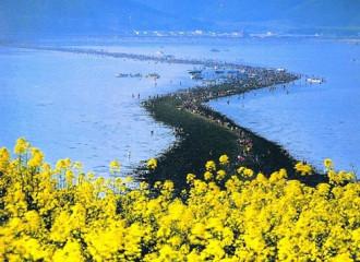 """Giải mã bí ẩn bỗng dưng """"biển tách làm đôi"""" ở Hàn Quốc"""