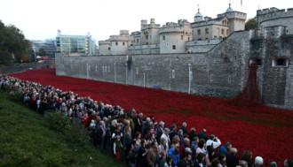 Người dân London đổ về xem biển hoa anh túc