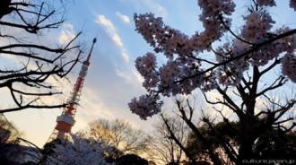 20 lý do khiến người Nhật cảm thấy may mắn khi sinh ra tại Nhật Bản