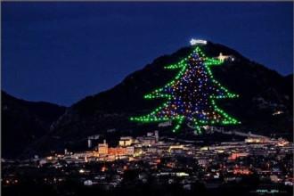 Cây thông Noel lớn nhất thế giới đã được thắp sáng