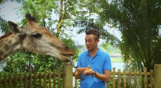Khám phá Singapore qua phim ngắn với MC Anh Tuấn