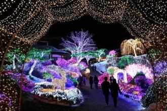 Người dân khắp nơi trên thế giới nô nức đón Giáng sinh