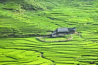 21 lý do khiến du khách yêu Việt Nam