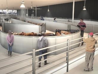 New York xây nhà ga hàng không cho động vật