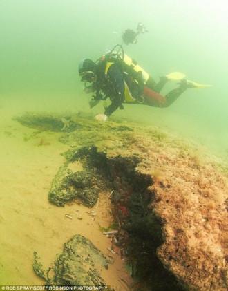 """Phát hiện """"khu rừng"""" bí ẩn 10.000 năm tuổi dưới biển sâu"""