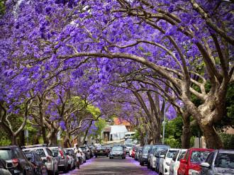 Những điểm đến tuyệt nhất của Úc qua 48 bức ảnh (P.1)
