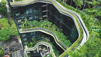 Singapore, đô thị trong công viên khổng lồ