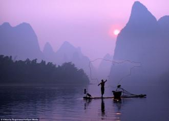 Kỳ lạ ngư dân bắt cá bằng chim cốc ở Trung Quốc