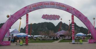 Lễ hội hoa anh đào Hạ Long