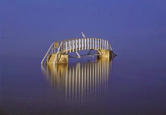 Cây cầu xuống gặp 'long vương' ở Scotland