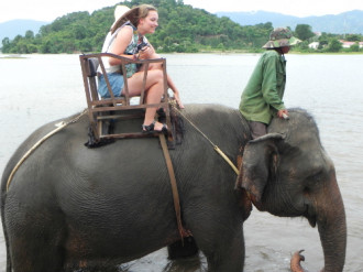 Đắk Lắk báo động nguy cơ hết voi trong 20 năm tới