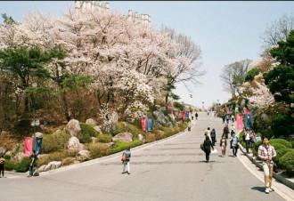 Hàn Quốc đẩy mạnh phát triển du lịch sau dịch Mers