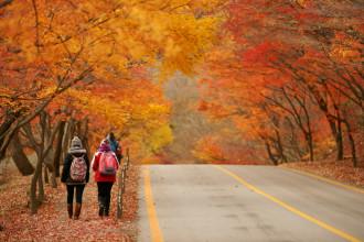 Không còn dịch bệnh Mers, du lịch Hàn Quốc nhận nhiều ưu đãi hấp dẫn