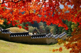 Vietravel ưu đãi tour Hàn Quốc