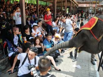 Bất ổn ở Thái Lan, du khách Việt thi nhau hủy tour du lịch
