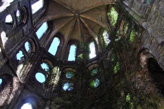 Những điểm đến hoang tàn bỗng thu hút khách nhờ... thiên nhiên