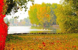 Vì sao bạn nên đi du lịch mùa thu châu Âu trong năm nay
