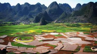 Ngôi làng cứ sinh hai con là đủ 'nếp - tẻ' ở Trung Quốc