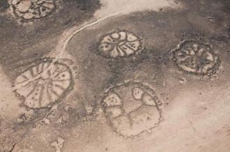 Những cánh diều bí ẩn trên cát