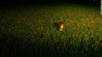 Những chiếc đầu ma quái trên đồng ruộng Nhật Bản