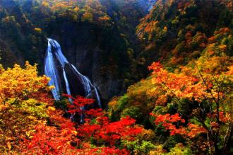 Thăm xứ sở kim chi khi mùa thu tới