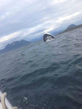 5 du khách thiệt mạng khi đi ngắm cá voi