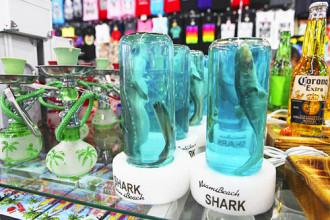 Cá mập đóng hộp làm quà lưu niệm gây tranh cãi