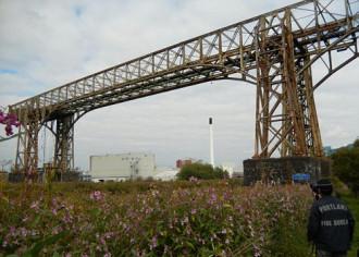 Du khách vượt hơn 10.000 km để chụp ảnh một cây cầu