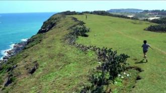 Ghé thăm Phú Yên để ngắm xứ sở 'hoa vàng trên cỏ xanh' đẹp hơn phim