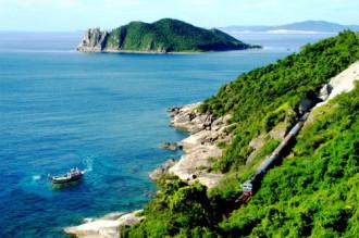 Phú Yên có tour 'hoa vàng trên cỏ xanh'