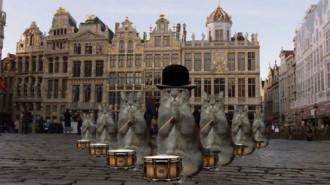 Bỉ tận dụng 'cơn sốt mèo' để hút khách sau khủng bố