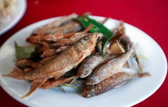 Đặc sản cá suối dân dã ở Mộc Châu