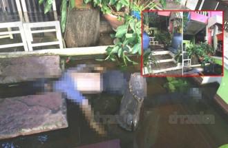 Du khách chết đuối bất thường trong ao cá ở Chiang Mai