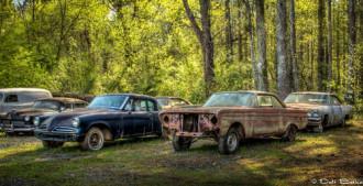 'Nghĩa địa xe hơi' ẩn mình trong rừng rậm Mỹ