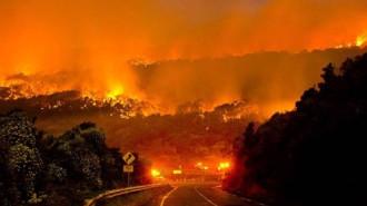 Cháy rừng Australia thiêu rụi phần lớn khu du lịch nổi tiếng