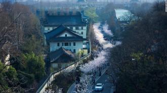 Nam Kinh – thành phố đế vương giữa lòng Trung Quốc