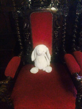 Thỏ bông đi lạc được khách sạn đối đãi như khách VIP