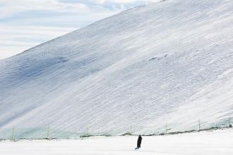Khu trượt tuyết trắng lóa giữa Trung Đông