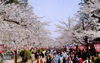 Nhật nới lỏng visa cho người Việt Nam và Ấn Độ