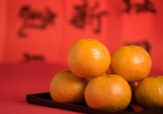 Quýt đỏ - món quà năm mới của người Trung Quốc
