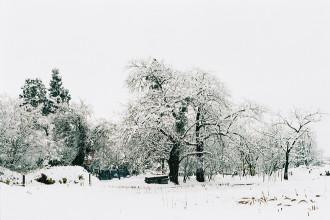 Tuyết trắng phủ kín thành phố Kitakata
