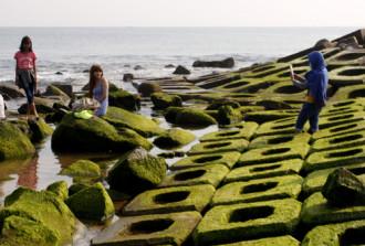 Bãi rêu xanh hút khách ở Phú Yên