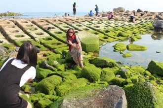 Bờ kè rêu xanh ở Phú Yên thành điểm tham quan kỳ lạ