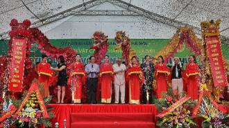Cây cảnh bạc tỷ trong lễ hội ở Thủ đô