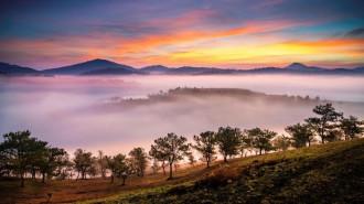 Đà Lạt nhuốm màu huyền ảo, lung linh trong sương sớm