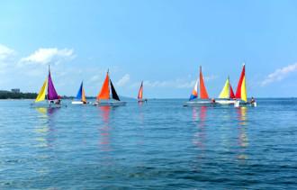 Những cánh buồm trên đảo ngọc Phú Quốc