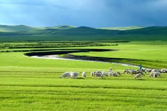 Thảo nguyên Mông Cổ bình yên mùa thu đến